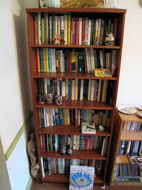 Bookshelf2755
