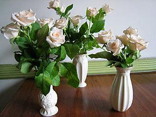 Roses2250