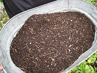 Compost2657