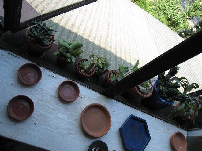 Window2009