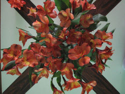 Bouquet3148