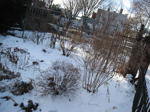 Snow5512