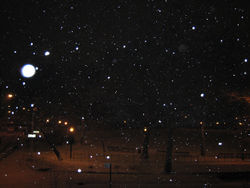 Snow5499