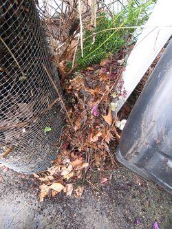 Compost5790